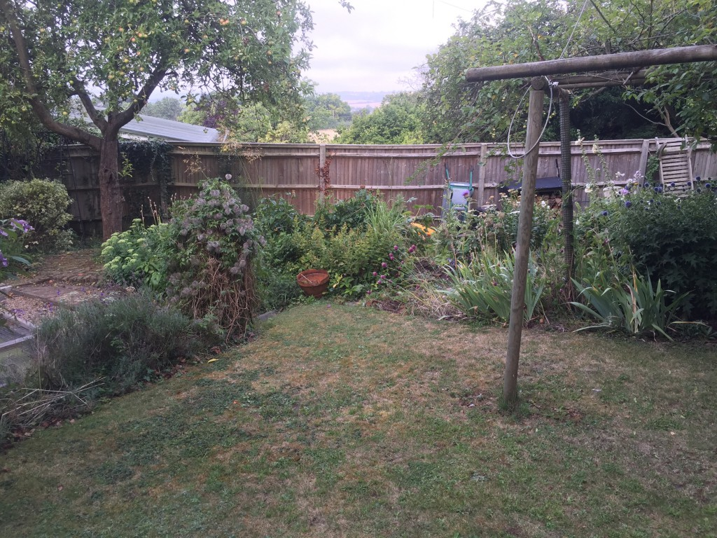 Garden before digging